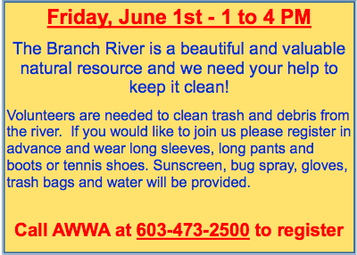 Branch River Cleanup June 1st
